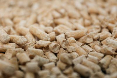 pellets